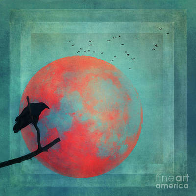 Blackbird Wall Art - Photograph - Rust Moon by Priska Wettstein