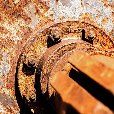 Photograph - Rust by Onyonet  Photo Studios