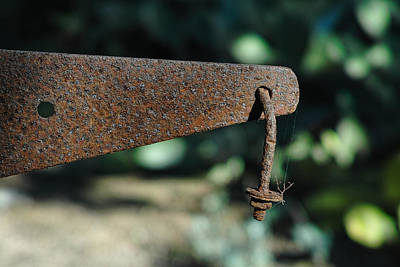 Photograph - Rust by Peter Dyke