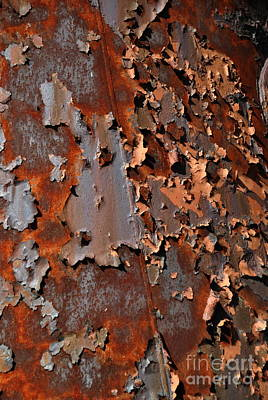 Photograph - Aging Steel by Jacqueline M Lewis