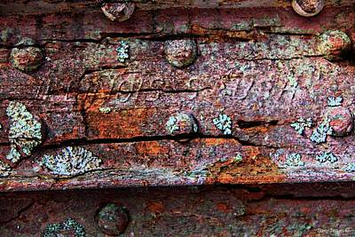 Photograph - Rust by Wesley Nesbitt