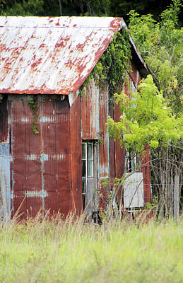 Photograph - Rusted Barn by Rosalie Scanlon