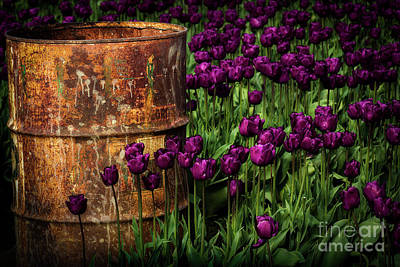 Photograph - Rusted Barrel In The Field by Sonya Lang
