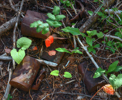 Photograph - Rusted Beauty by Sharon Seaward