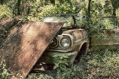 Photograph - Rusted Beauty by Travis Rogers
