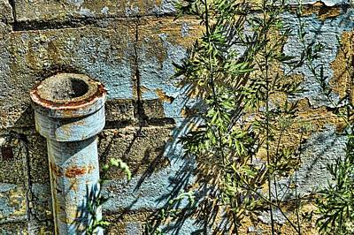 Photograph - Rusted Pipe With Leaves by Mike McCool
