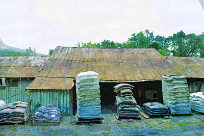 Shed Digital Art - Rusted Roof Shed Rust Old Rural  by PixBreak Art