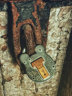 Photograph - Rusted Security by Andrea Platt