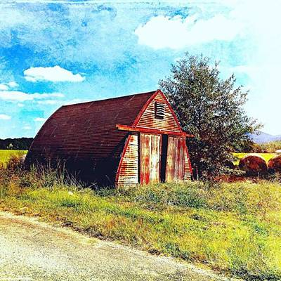 Rusted Shed, Lazy Afternoon Art Print