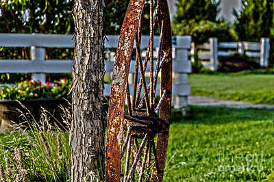 Lovely Lavender - Rusted Wagon Wheel by William Norton