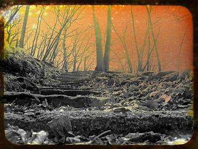 Photograph - Rusted Winter Fallout by Kyle West