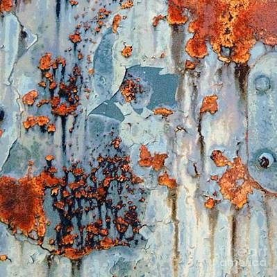 Abstracted Coneflowers Photograph - Rusted World - Orange And Blue - Abstract by Janine Riley
