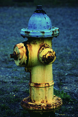 Photograph - Rusted Fire Hydrant by Roberta Byram