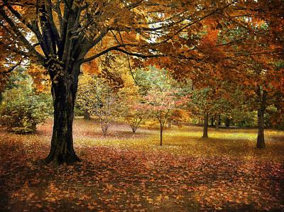 Rustic Autumn  Art Print by Jessica Jenney