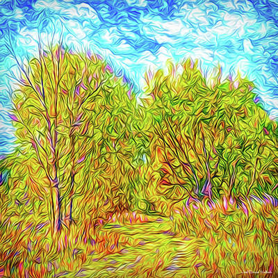 Digital Art - Rustic Autumn Walkway - Trees In Boulder County Colorado by Joel Bruce Wallach