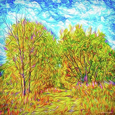 Digital Art - Rustic Autumn Walkway - Trees In Boulder County Colorado by Joel Bruce Wallach