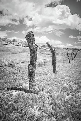 Photograph - Rustic Barbed Wire Fence by Alexander Kunz