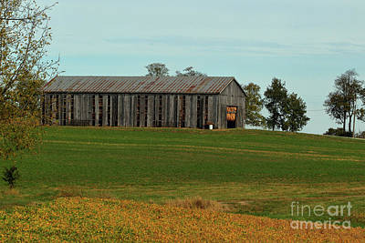 Rustic Barn On The Rise Art Print by Alan Look