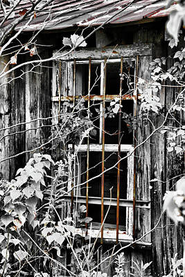 Photograph - Rustic Barn Window by Greg Sharpe