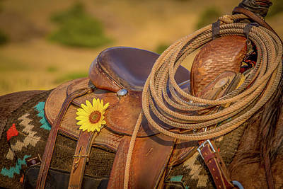 Photograph - Rustic Beauty by Fast Horse Photography