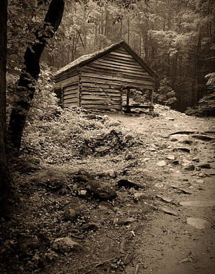 Photograph - Rustic Cabin by Larry Bohlin