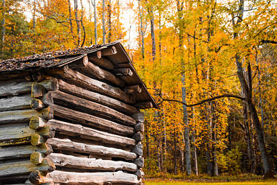 Photograph - Rustic Cabin by Shelby Young