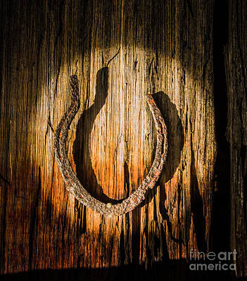 Wild Horse Wall Art - Photograph - Rustic Country Charm by Jorgo Photography - Wall Art Gallery