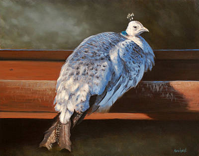 Painting - Rustic Elegance - White Peahen by Linda Merchant