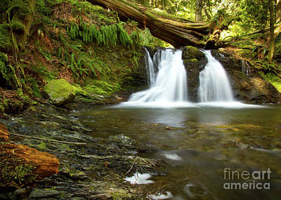Traditional Bells Rights Managed Images - Rustic Falls Royalty-Free Image by Idaho Scenic Images Linda Lantzy