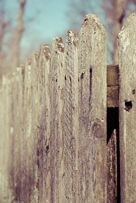 Rustic Fence Art Print by Erin Cadigan