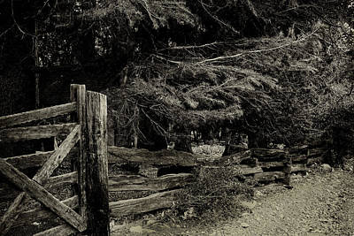 Photograph - Rustic Fence by Joseph Hollingsworth