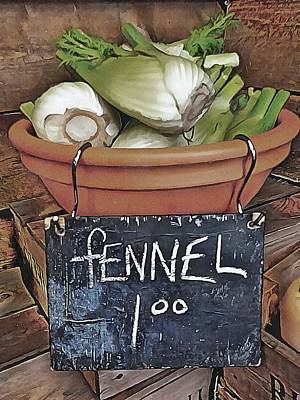 Photograph - Rustic Fennel Display by Dorothy Berry-Lound