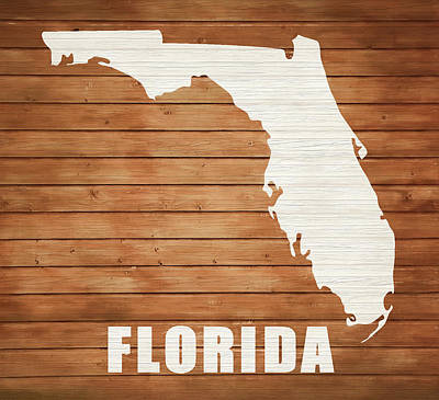 Mixed Media - Rustic Florida Map On Wood by Dan Sproul