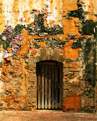 Rustic Fort Door Art Print by Perry Webster