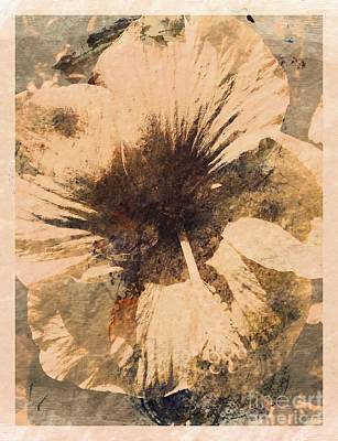 Photograph - Rustic Hibiscus by Barbara Griffin