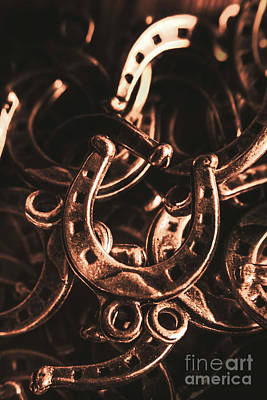 Close Up Horses Photograph - Rustic Horse Shoes by Jorgo Photography - Wall Art Gallery