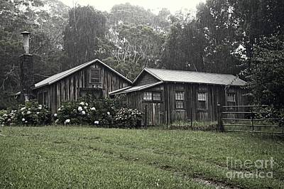 Photograph - Rustic In The Rain by Teresa Wilson