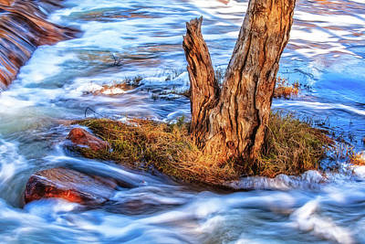 Print featuring the photograph Rustic Island, Noble Falls by Dave Catley