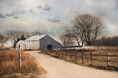 Print featuring the photograph Rustic Lane by Robin-Lee Vieira