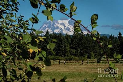 Photograph - Rustic Mountain by Deborah Klubertanz