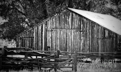 Photograph - Rustic Nevada Barn In Black And White by Bobbee Rickard