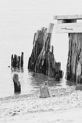 Photograph - Rustic Pilings In Bw by Margie Avellino