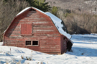 Photograph - Rustic Red Barn by Natalie Rotman Cote