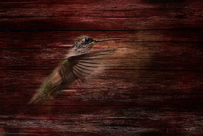 Rustic Red Hummingbird Primitive Decor Print by Jai Johnson