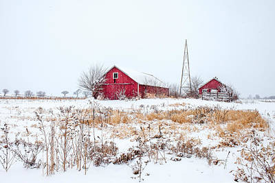 Photograph - Rustic Reds by Todd Klassy