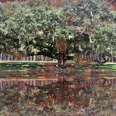 Photograph - Rustic Reflections Of An Old Oak Tree by rd Erickson