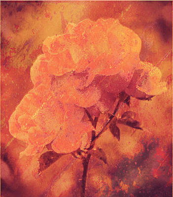 Digital Art - Rustic Textured Roses  by Fine Art By Andrew David