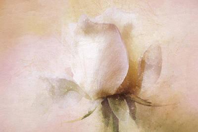 Dappled Light Mixed Media - Rustic Rose by Terry Davis