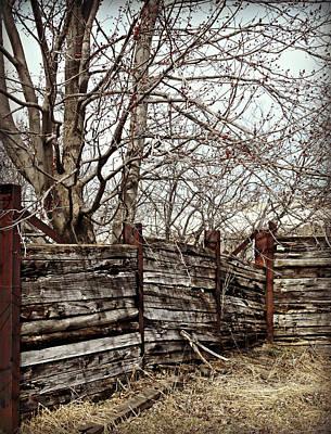 Photograph - Rustic Sides by Cyryn Fyrcyd