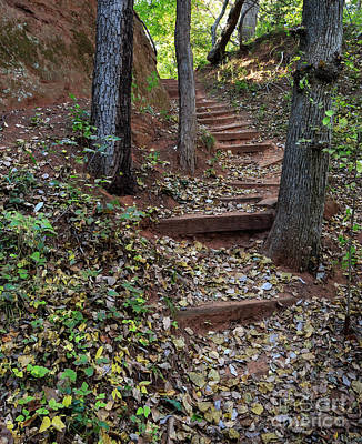 Photograph - Rustic Stairway #2 by Richard Smith